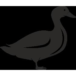 Sticker Ferme Canard