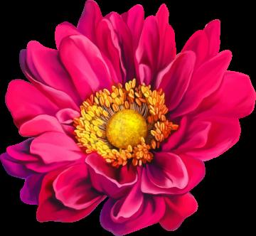 Autocollants Fleur Rose