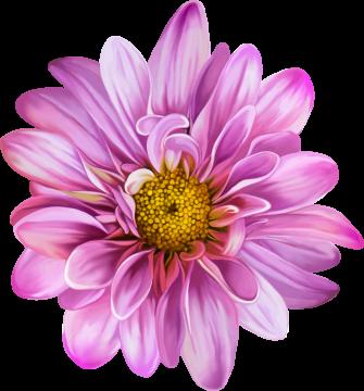 Autocollants Fleur Rose 2
