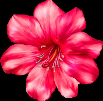 Autocollants Fleur Rose 2 1