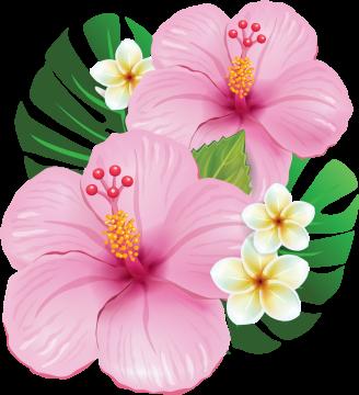 Autocollants Fleur Tropical 5