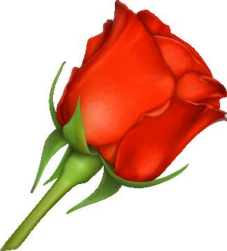 Autocollants Fleur Rose Rouge