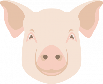 Autocollant Logo Animaux Ferme Cochon 2