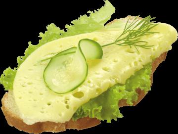 Autocollant Alimentation Sandwich 1