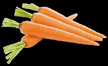 Autocollant Alimentation Légume Carotte 1