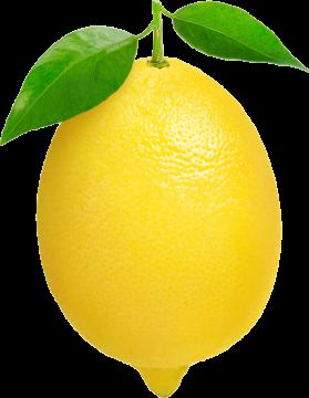 Autocollant Alimentation Fruit Citron 1