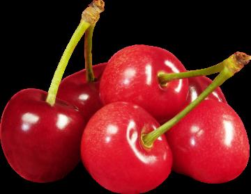 Autocollant Alimentation Fruit Cerises 3
