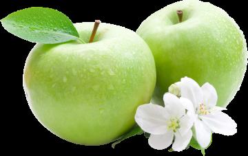 Autocollant Alimentation Fruit Pommes 2
