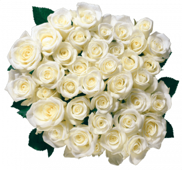 Autocollant Divers Fleur Rose 3