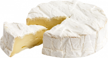 Autocollant Alimentation Fromage Brie 1