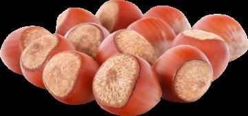 Autocollant Alimentation Noisettes