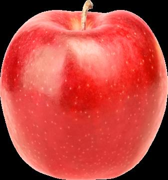 Autocollant Alimentation Pomme Fruit 2