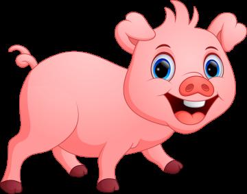 Autocollant Animaux Cochon 5