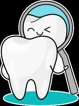 Autocollant Logo Dentiste Dent 3