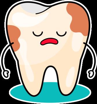 Autocollant Logo Dentiste Dent 5
