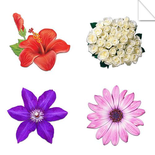 Autocollants Fleurs